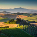 Classic Wines of Tuscany Dinner